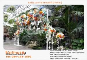 วงดนตรีและเครื่องเสียง_งานแต่งบ้านก้ามปู_วงดนตรีบ้านก้ามปู_1